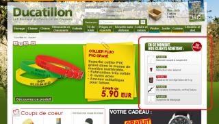 module-emerch-ducatillon
